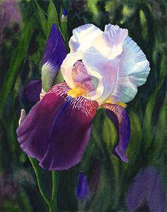 Cathy Hilegas watercolor