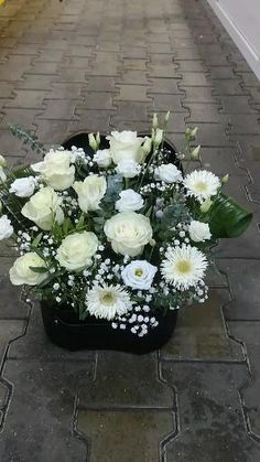 Pure White, Pure Products, Plants, Plant, Planets