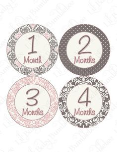 Monthly Onesie Stickers Baby Month Stickers - Elena - Sophisticated Posh Damask in Pink and Gray - Great Baby Shower Gift and Photo Prop. $9.00, via Etsy.
