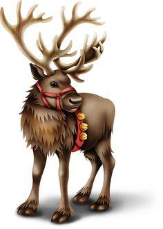 CHRISTMAS RIENDEER