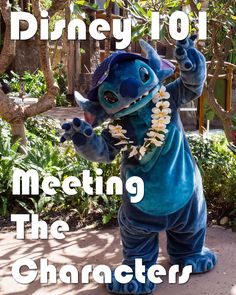 Disney 101: Meeting The Characters