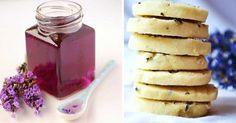 Recept na levandulový sirup a sušenky