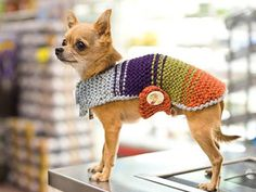 Dog sweater, Knit dog clothing, Handmade multi colored dog sweater, pet lovers, pet gift ideas, children pet gift
