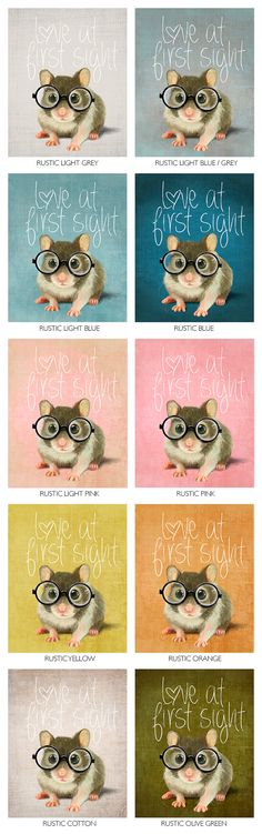 A small mouse with glasses on a rustic yellow background (print 6x8) Illustration fine art giclée prints