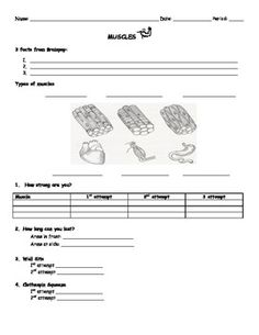 How muscles work worksheets muscles and human body this worksheet goes along with the presentation that teaches students about the different types of muscles including a very funny video and a handful of ccuart Choice Image