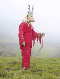 The Wilder Mann series by photographer Charles Fréger. Portraits of tribes in Europe.