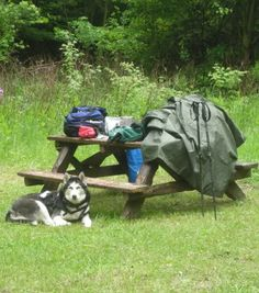 Meal time on the Bruce Trail, 2009