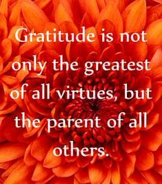 Gratitude is not only the greatest of all virtues, but the parent of all others. #BLOOM