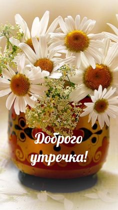Доброе утро! Good Morning Gif, Good Morning Images, Clever Quotes, Flower Making, Congratulations, Planter Pots, Daisy, Original Art, Illustration