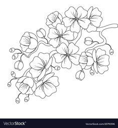 9 Meilleures Images Du Tableau Fleur De Cerisier Dessin En