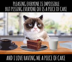 Pleasing Everyone Is Impossible But Pissing Everyone Off Is A Piece Of Cake 🍰 Grump Cat, Grumpy Cat Meme, Funny Cat Memes, Funny Cats, Animals And Pets, Cute Animals, Funny Sarcasm, Hilarious Animals, Funny Picture Quotes