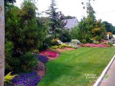 Privacy Planting for the front yard evergreen Creative Landscape, Landscape Design, Garden Design, Abstract Landscape, Landscaping Along Fence, Small Backyard Landscaping, Backyard Ideas, Landscaping Tips, Burm Landscaping
