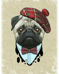⛳ It's Rory McPuglet, wold famous #Golf legend! ⛳  www.jointhepugs.com  #pugs #pugpower #dogs #pugsnotdrugs #puglove #cuteness #puglover
