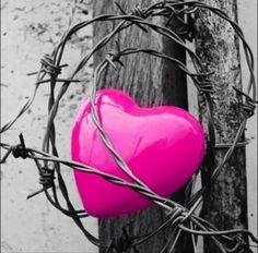 Caged heart color splash ~ by Ladee Pink