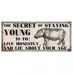 """Schild mit Spruch: """"The Secret of staying young is to: Live honestly, and lie about your age. Stay Young, The Secret, Age, Signs, Stay Gold"""