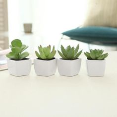 Combining the seldom co-existing traits of cuteness and low-maintenance care, this adorable set of 4 mini artificial succulents is the perfect way to add some greenery to your space. The set of 4 square white ceramic planters comes with lifelike faux succulents, making them the perfect decor for busy offices and households. The small size of the planters if perfect for small spaces or bare nooks. The clean design of these mini planters complements a variety of business and home decors. Use… Small Fake Plants, Fake Plants Decor, Room With Plants, House Plants Decor, Mini Plants, Faux Plants, Plant Decor, Little Plants, Artificial Succulents