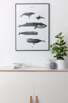Kētos print on the cupboard - via cocolapinedesign.com