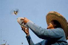 Woman releasing bird from cage at buddhist temple. by Hugh Sitton - Stocksy United Buddhist Temple, Photos Of Women, Cage, Vietnam, The Unit, Culture, Stock Photos, Bird, Woman