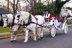 Image detail for -Wedding Carriage - Horse and Rides | Tips Web