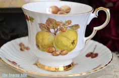 Royal Windsor Ribbed Fruit and Nut Teacup And by TheTeacupAttic