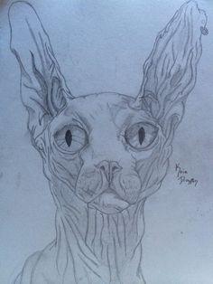 Meow by Koia Drayton