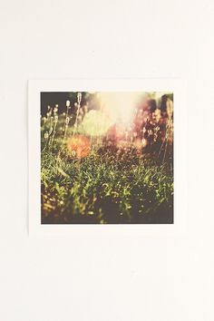 13x13 Mareike Bohmer Grass 2 Art Print - Urban Outfitters