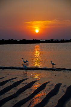 "natures-rich-palette: ""  Sunset in Salinitas, El Salvador…….by Rodolfo Obando """