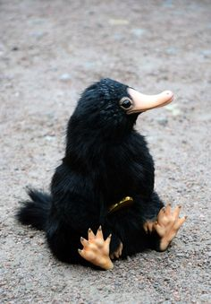 Niffler - Creatures in the garden of my imagination - Plush Hogwarts, Baby Animals, Cute Animals, Kawaii, Fantastic Beasts And Where, Toy Art, Black Bear, Art Dolls, Dragons