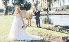 A Tampa Bay wedding photo taken by Rising Lotus Photography