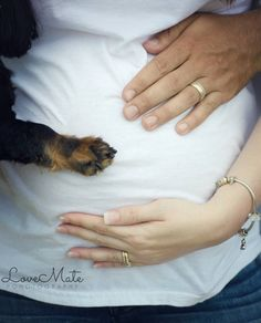 Maternity photoshoot - photo shoot - pregnancy - prop - Dog - dachshund - family - photography - photographer - loveMate Photography - belly - hands - paw
