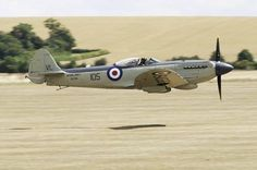 """british-eevee: """" Seafire on a low pass (Date and location unknown) """""""