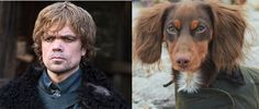 """Tyrion Lannister 
