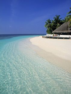 Maldives - one of the best beaches in the world!