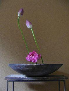 Ikebana - love the word, Japanese flower arranging, performed in silence, a spiritual creation.