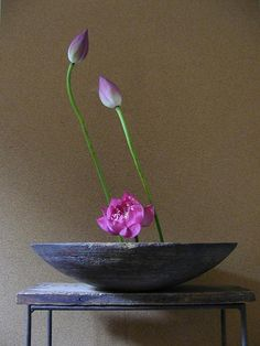 Ikebana flower arrangement floral art lotus