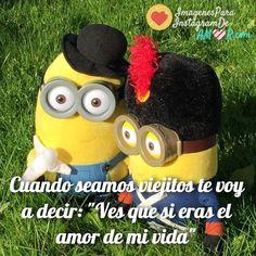 Imagenes de Minions Con Frases de Amor!