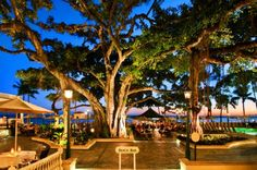 Moana Surfrider Hotel - Waikiki . Where we spent 3 lovely evenings watching the sunset!
