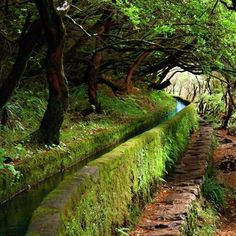 The Levadas Mini Irrigation Canals - Island of Madeira, Portugal   Info on walking tours available at www.madeira-levada-walks.com
