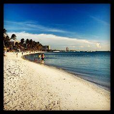 almost as pretty as La mata beach Palm Beach Aruba, Water, Pretty, Travel, Outdoor, Gripe Water, Outdoors, Viajes, Destinations
