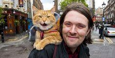 James Bowen with Street Cat Bob, London