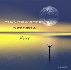 We carry inside of us the wonders we seek outside of us. Rumi Quotes