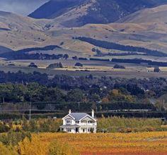 Martinborough, NZ Historic Homestead/Cafe, Cottage, Organic/Biodynamic Vineyard For Sale!