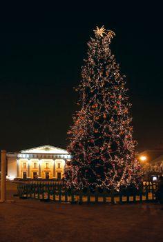 Christmas Tree in Rotuse Square, Vilnius. - Lars Bryne © 2005