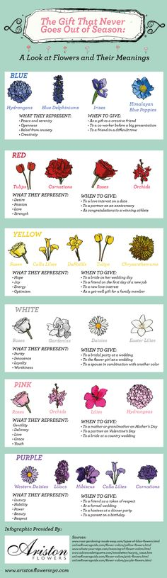 Flowers & their meanings.                                                                                                                                                                                 More
