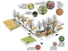 Planning leveragesurban and ecological services in the porch, yard,  street, and open space. Neighborhoods are developed as sub-watersheds.