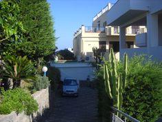 Hotel Cesotta - Forio - Ischia - Itálie