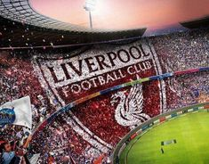 Liverpool Tattoo, Liverpool Logo, Liverpool Champions, Salah Liverpool, Premier League Champions, Liverpool Football Club, Liverpool Fc Wallpaper, Newcastle United Fc, This Is Anfield