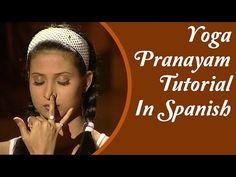 Yoga Pranayama Asanas | Tipos, pose y Posturas | Tutorial Yoga En Español - YouTube
