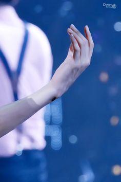 """150531 The EXO'luxion in Shanghai Day 2 © baekkGi56 | do not edit."" Byun Baekhyun has such beautiful hands mygod"