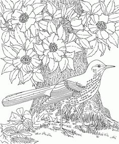 14 Detailed Coloring Pages for Adults6